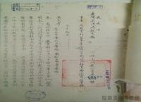 民國38 年以後臺灣政治發展/反共抗俄/中國青年反共救國團